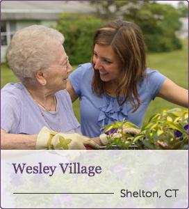 Wesley-Village