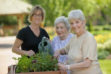 Early Onset Dementia - Lifestyle Transitions