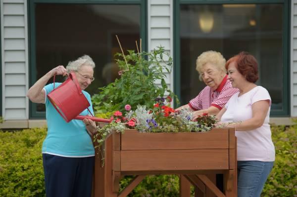 Celebrate Earth Day - 3 Gardening Tips Seniors will Enjoy