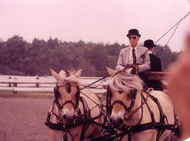 Ted_in_Horse_Show-resized-600