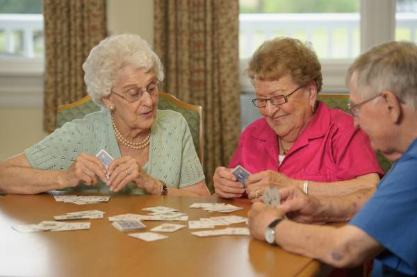 8 Activities to Help Stimulate Your Aging Loved One