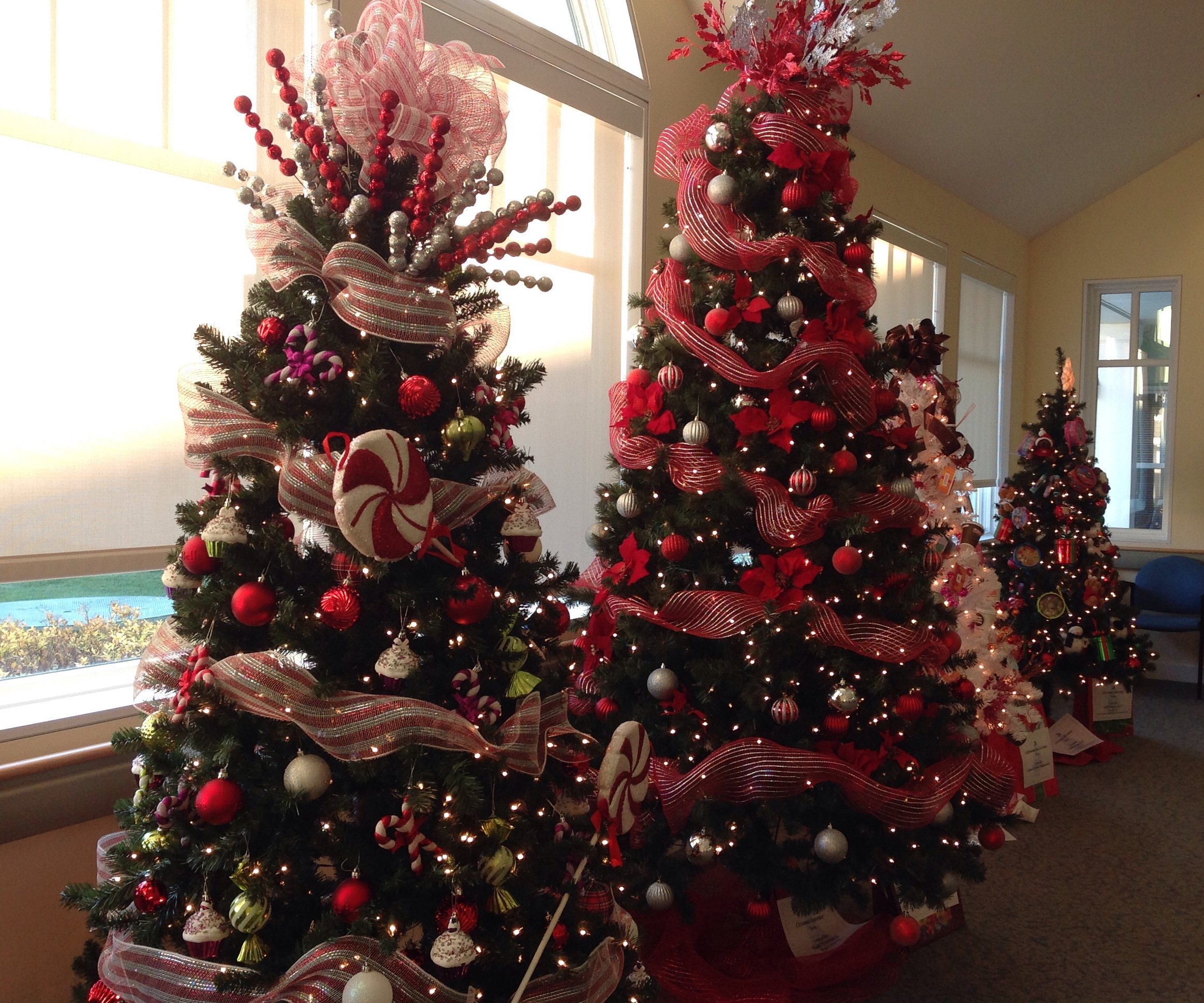Festival of Trees at Wesley Village
