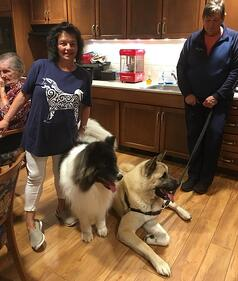 Pet Therapy at Wesley Village