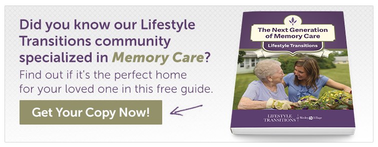 Lifestyle Transitions Memory Care CT