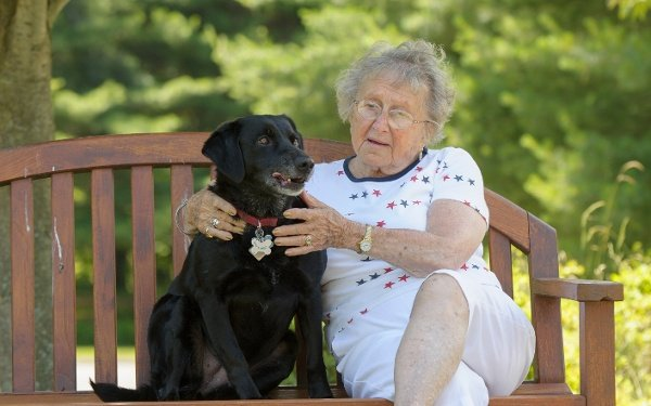 Pet Care and Your Aging Loved One