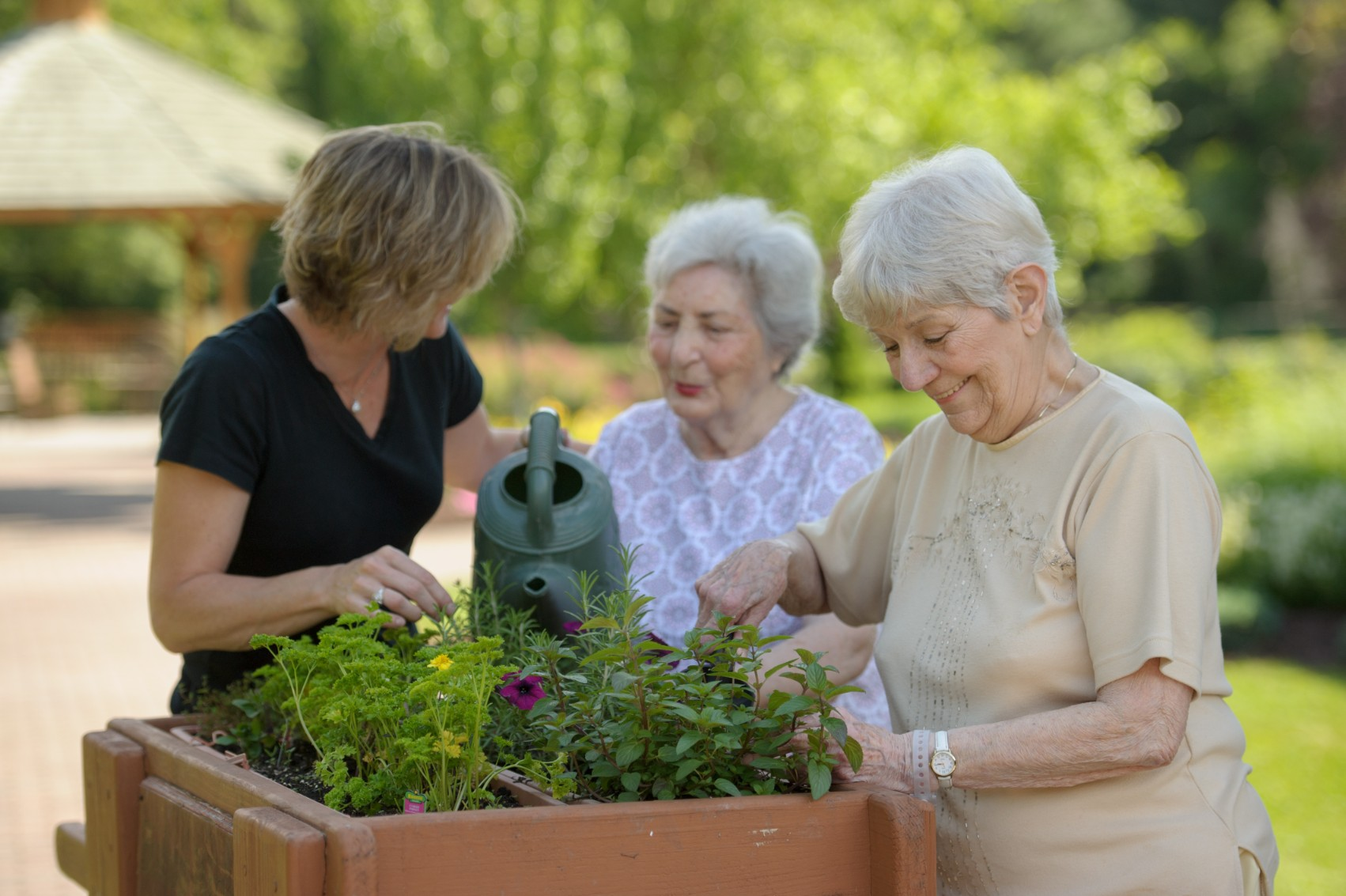Caregivers – 5 Things You Should Do This Spring